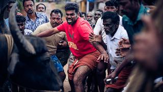 【「ジャッリカットゥ 牛の怒り」評論】見た目トンデモ映画、でも実はアカデミー賞インド代表。一体どんな映画??