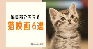 「猫の恩返し」放送記念 編集部のおすすめ猫映画6選 【映画.comシネマStyle】