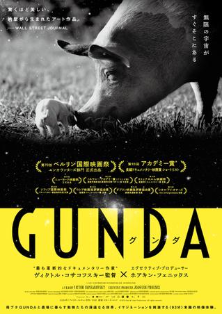 ホアキン・フェニックス製作ドキュメンタリー「GUNDA」予告、P・T・アンダーソン、アリ・アスターらのコメント公開