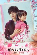 中島健人×松本穂香「桜のような僕の恋人」映像初公開 人の何十倍も早く老いていく恋人とのかけがえのない時間