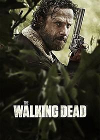 Hulu11月海ドラ視聴数ランキング、「ウォーキング・デッド」がV3!