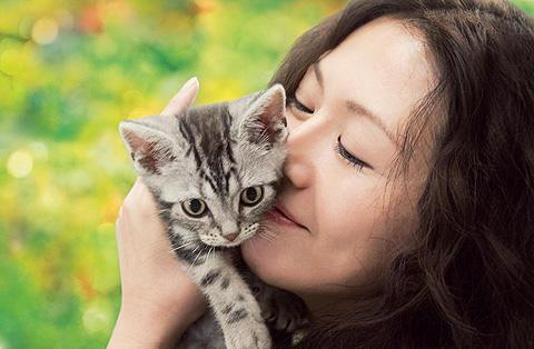 猫のいる生活を通して、命の生死を温かく見つめる