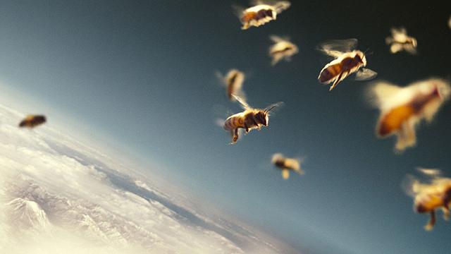 驚くほどに美しい、ハチの飛行シーン