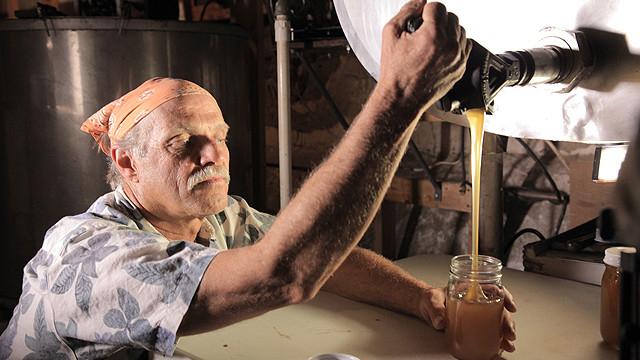 キラービーからハチミツを採る、米アリゾナの養蜂家フレッド・テリー