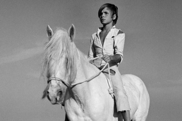 白い馬(1953)