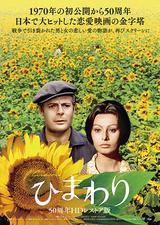 ひまわり(1970)