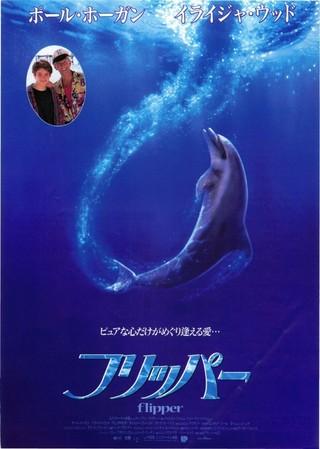 フリッパー(1996) : 作品情報 ...