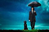 Sweet Rain 死神の精度の予告編・動画