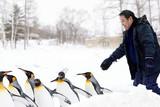 「旭山動物園物語 ペンギンが空をとぶ」