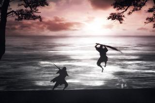 宮本武蔵 双剣に馳せる夢