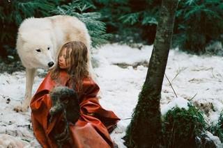 ミーシャ ホロコーストと白い狼