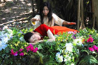 真夏の夜の夢の予告編・動画