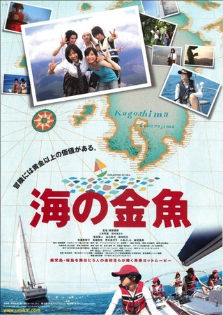 海の金魚 : 作品情報 - 映画.com