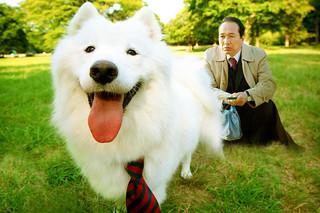 犬飼さんちの犬