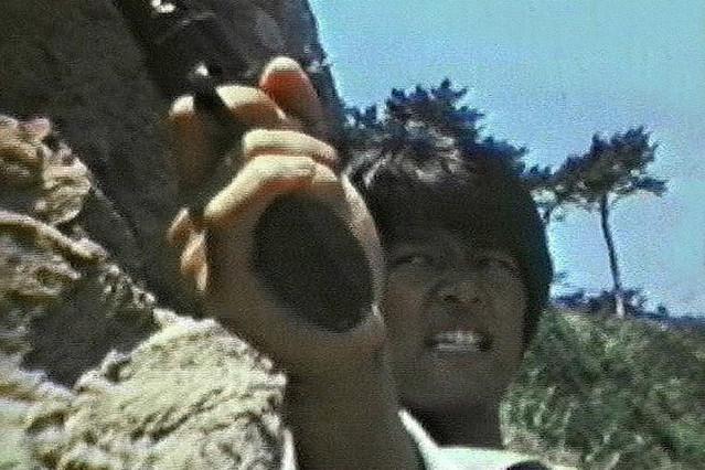 荒野の狼(1976)