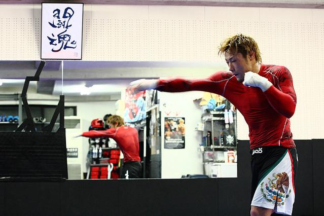 MMA ドキュメンタリー HYBRID