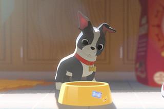 愛犬とごちそう