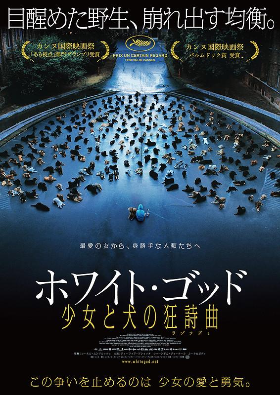 https://eiga.k-img.com/images/movie/81821/poster2.jpg?1435890052