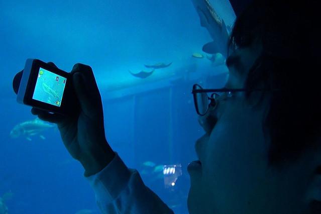 ぼくは写真で世界とつながる 米田祐二 22歳