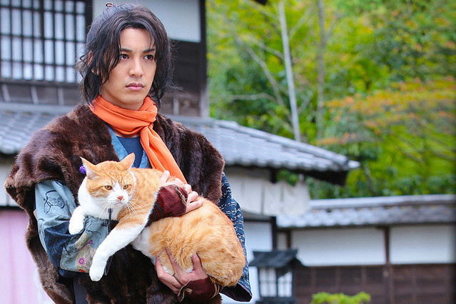 猫忍 : 作品情報 - 映画.com