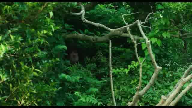 特別映像:大御所を探せ編