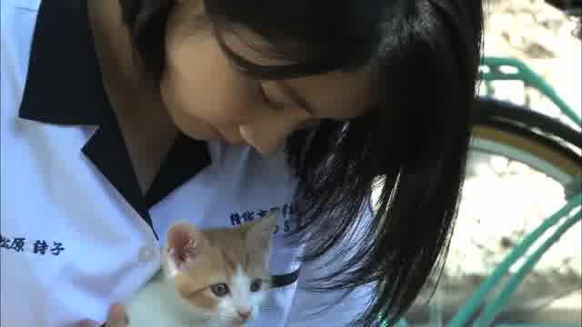 メイキング映像:松本穂香と猫