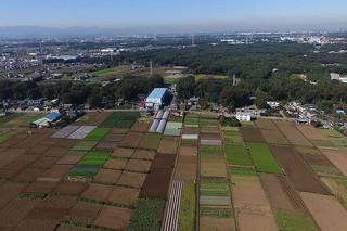 武蔵野 江戸の循環農業が息づく