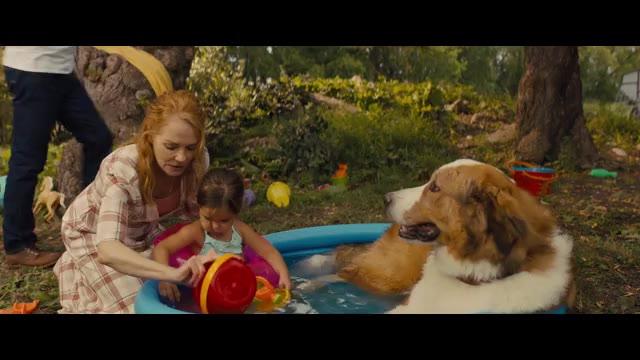 本編映像:ベイリーとグロリアの水遊び