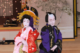 シネマ歌舞伎 廓文章 吉田屋