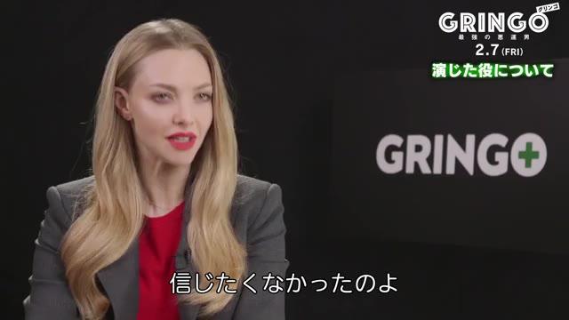 インタビュー映像:アマンダ・セイフライド
