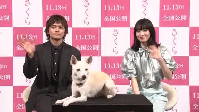 """""""犬の日""""特別動画"""