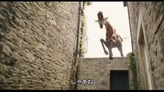 本編映像6(字幕版)