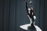 ボリショイ・バレエ in シネマ Season 2019-2020 「白鳥の湖」