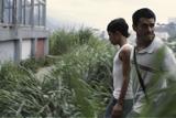 報復の街をあとに ペドロ12歳の旅立ち