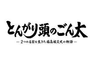 とんがり頭のごん太 2つの名前を生きた福島被災犬の物語