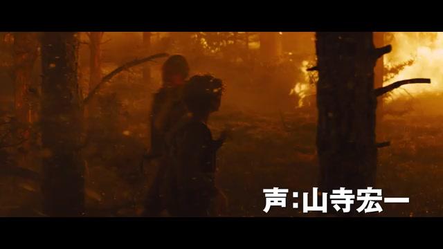 "特別映像:""サバイバル""編"