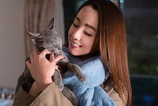 「猫は抱くもの」完成披露試写会