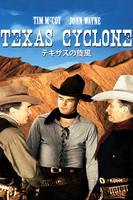 テキサスの旋風