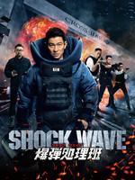 SHOCK WAVE ショック ウェイブ 爆弾処理班