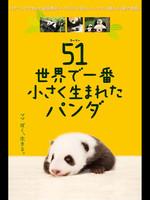 51(ウーイー) 世界一小さく生まれたパンダ
