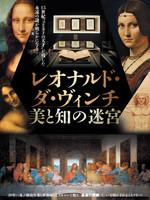 映画『レオナルド・ダ・ヴィンチ 美と知の迷宮』