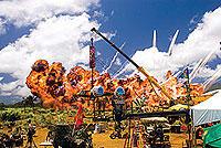 「地獄の黙示録」の影響が大きい強烈なナパーム爆撃