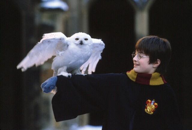 「ハリー・ポッターと賢者の石」(2001)より