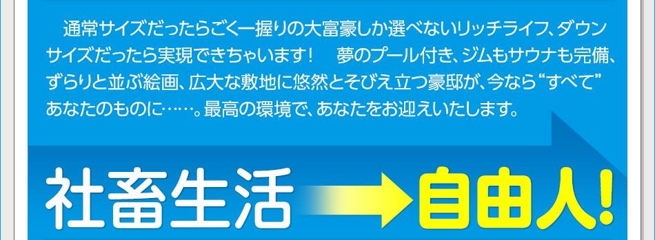 社畜生活→自由人!