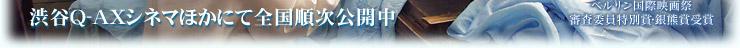 孔雀 ―我が家の風景―