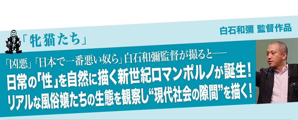 """「牝猫たち」:「凶悪」「日本で一番悪い奴ら」白石和彌監督が撮ると──日常の「性」を自然に描く新世紀ロマンポルノが誕生!リアルな風俗嬢たちの生態を観察し""""現代社会の隙間""""を描く!"""