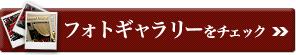 第85回アカデミー賞フォトギャラリー